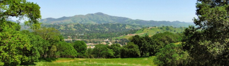 Real Estate in Lamorinda